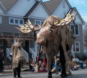 moose crop
