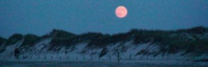 header moon